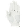Picture of Callaway Mens Weather Spann Golf Glove