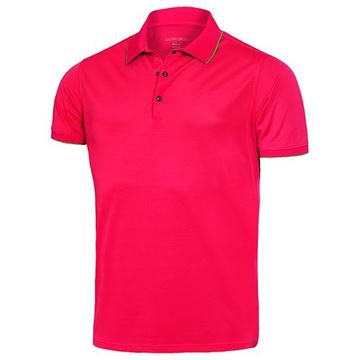 Picture of Galvin Green Mens Marty Golf Shirt - Pink