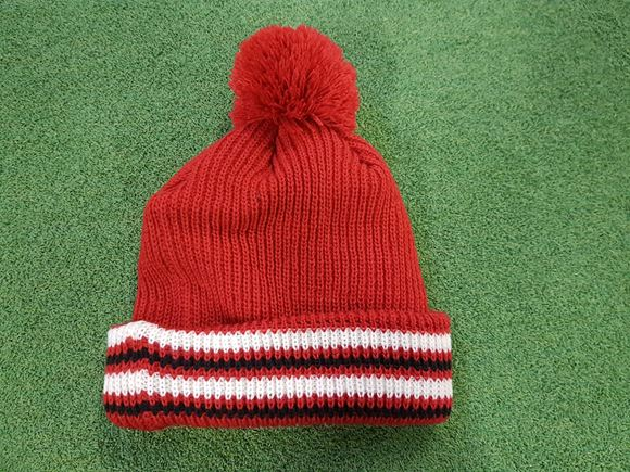 Picture of Mizuno Mens Bobble Hat - Red